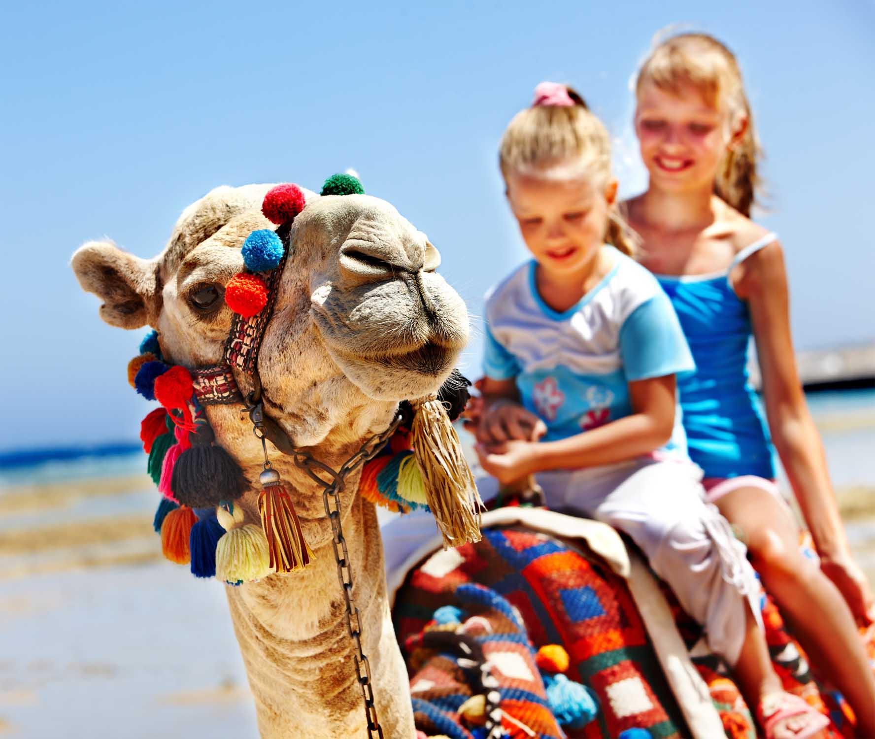 Горит тур в Египет на каникулы
