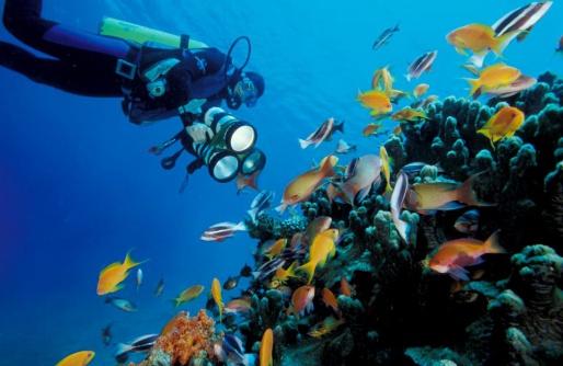 красное море акабы- туры